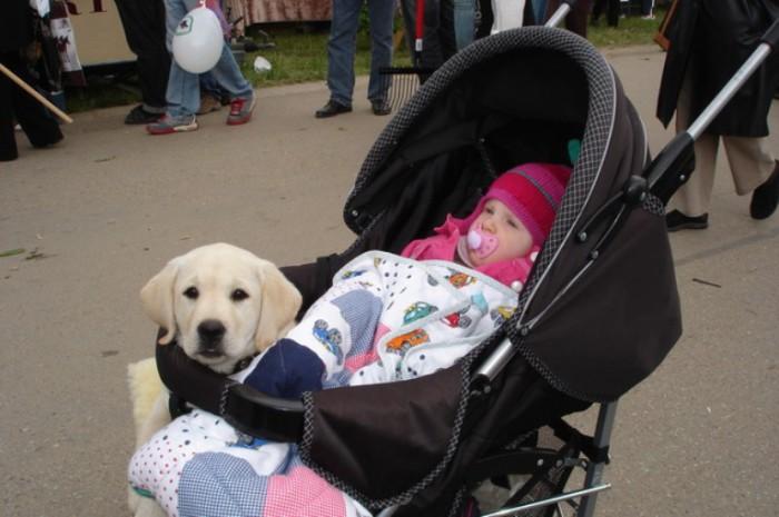 Pasear con el bebé y el perro