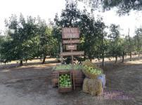 Bienvenida Naturday Naturnes de Nestlé