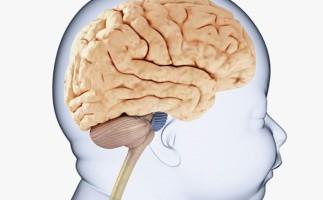 El sulfato de magnesio previene la parálisis cerebral en el bebé